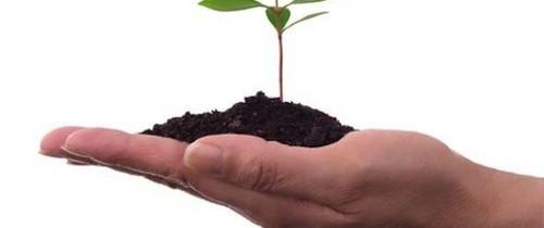 Finanziamenti a Fondo Perduto in Agricoltura