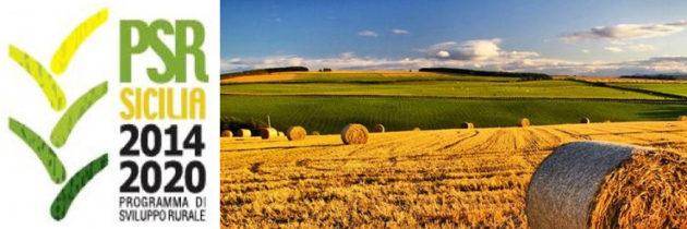 PSR SICILIA – MISURA 4.1: Sostegno a investimenti nelle aziende agricole